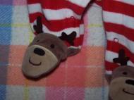 Reindeer feet, https://huffygirl.wordpress.com, © Huffygirl 2012